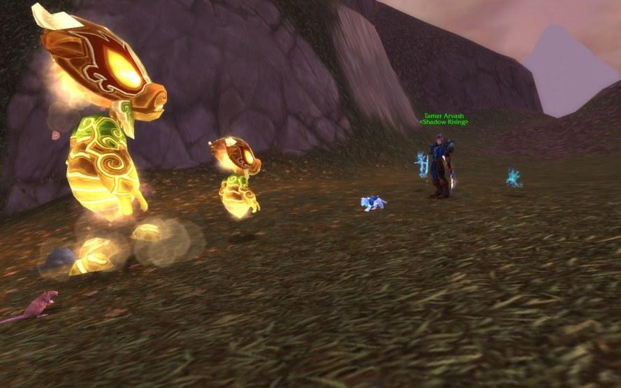 Fighting the Thundering Spirit Tamer