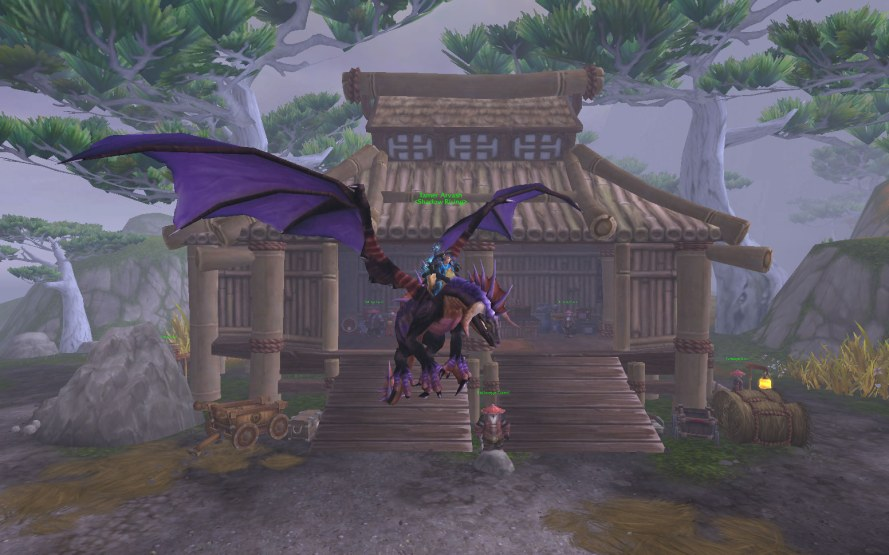 Reins of the Onyxian Drake
