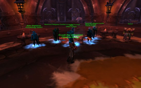 Spraying the Blood Elves in Org